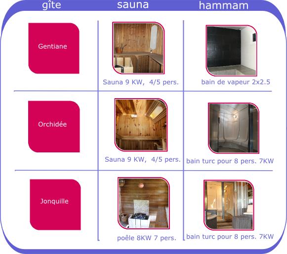 G tes de groupe 15 personnes en alsace avec espace bien tre - Difference entre sauna infrarouge et traditionnel ...